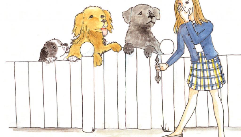 BD_illustration_fence